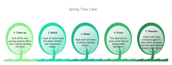 Tree Care Sequence Chart Template