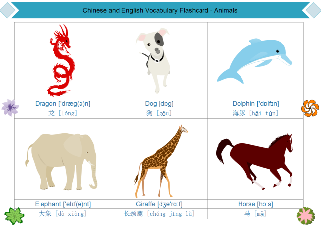 Animal Flashcard
