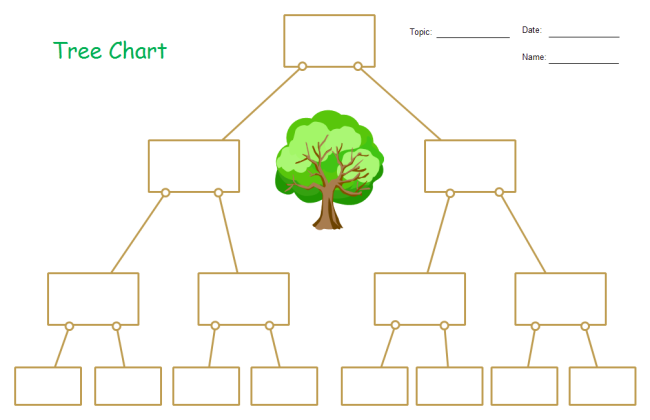 Tree Chart Graphic Organizer