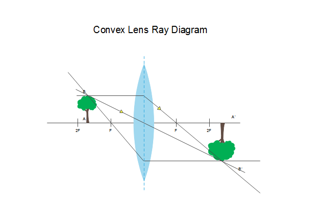 Convex Lens Ray Diagram Free Convex Lens Ray Diagram Templates