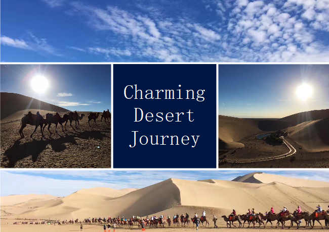 Desert Travel Photo Collage