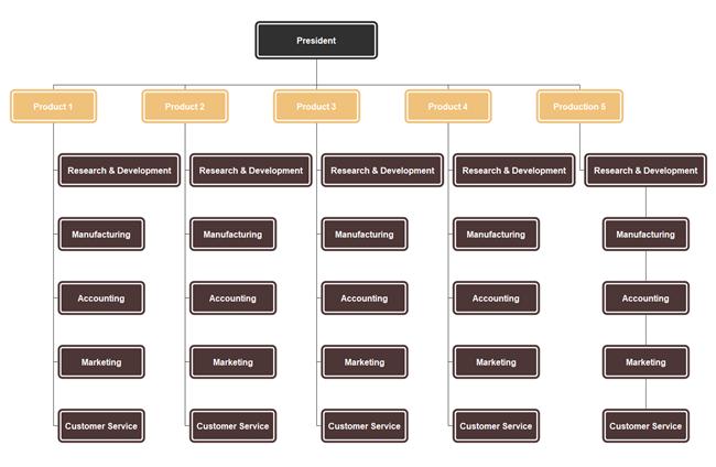 Divisional organizational char