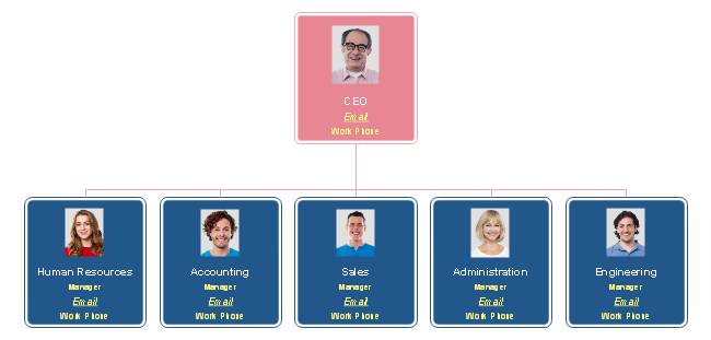 Functional Software Company Organizational Chart