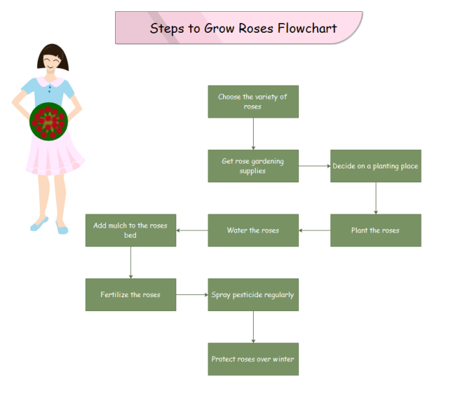 Growroses Process Steps