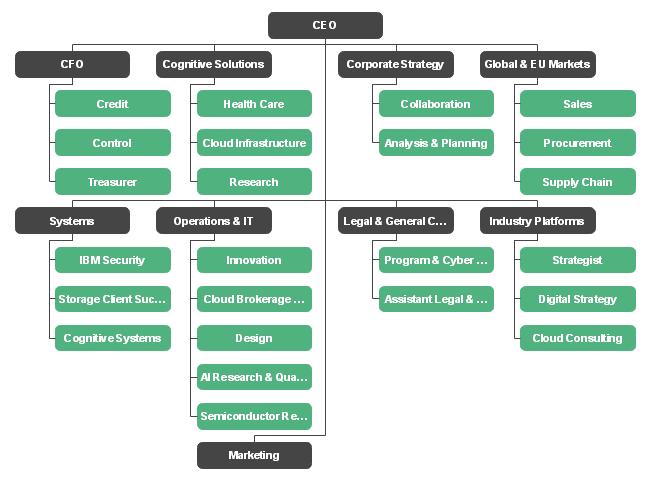 IBM Organizational Chart