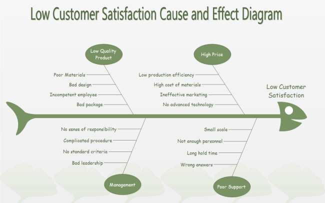 Customer Satisfaction Cause and Effect Diagram Example