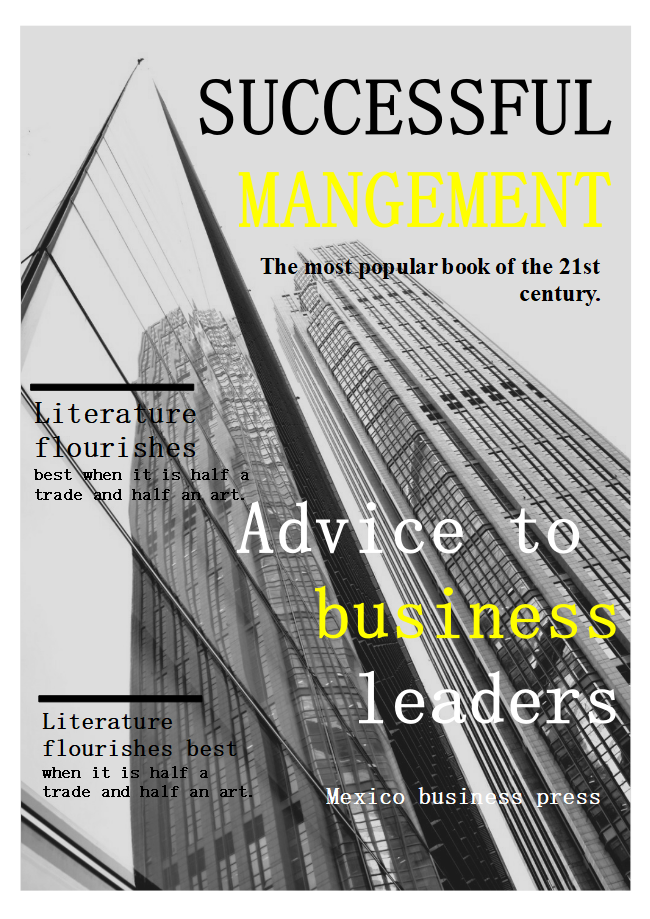 Management Business Book Cover