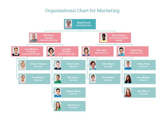 Organizational chart for matkrting