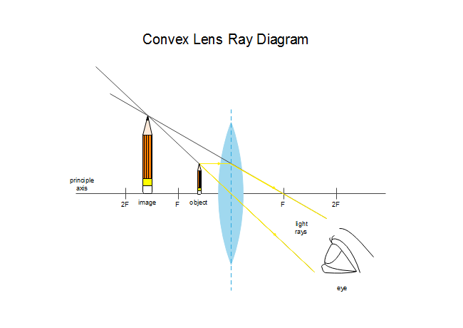 One Side Convex Lens Ray Diagram Free One Side Convex Lens Ray