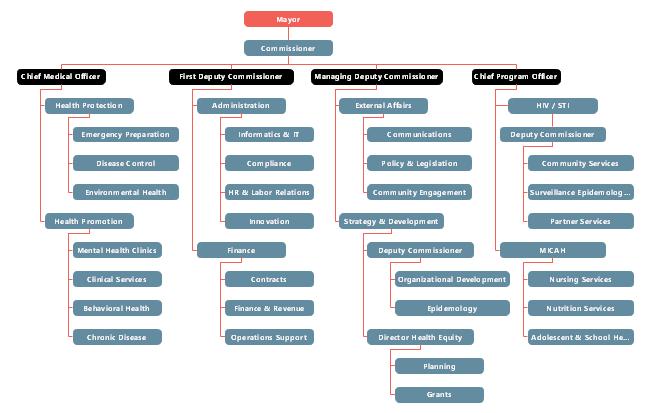 Public Health Non-profit Organizational Chart Example