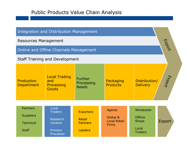 public products value chain analysis example