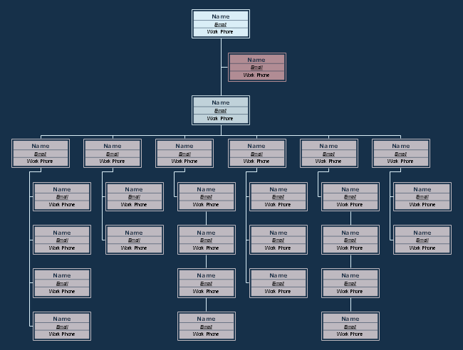 Retail Organizational Chart Template for Large Firms