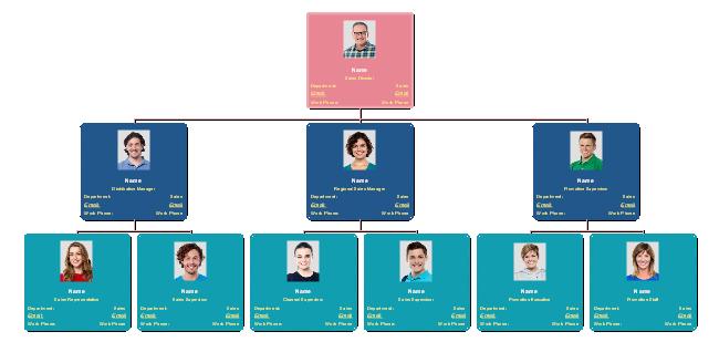 Estrutura Organizacional de Vendas