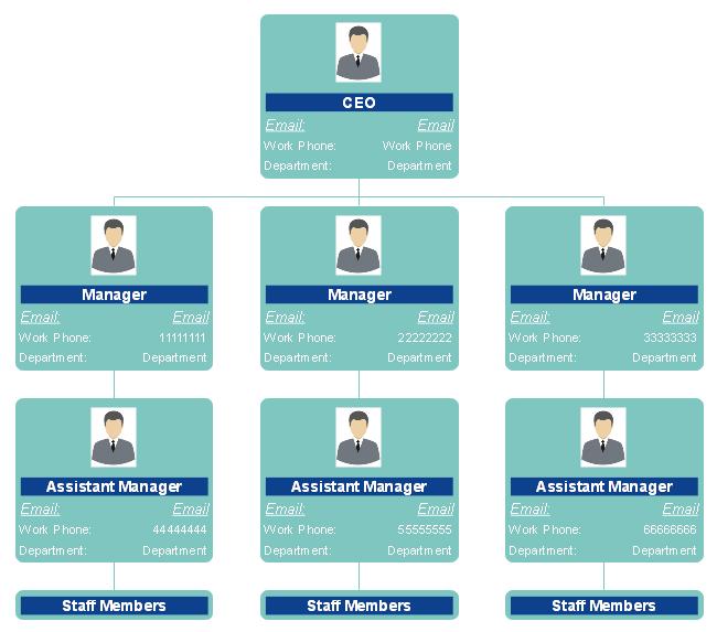 Functional Employee Organizational Chart Example