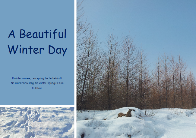 Winter Scenery Photo Collage
