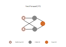 Feed Forward Neural Network
