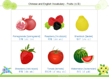 Carte de vocabulaire de fruit 4