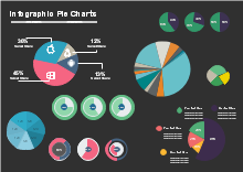 infographic pie charts