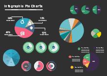 infographic pie charts
