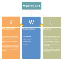 Migratory Bird KWL Chart