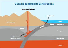 Oceanic Continental Convergence