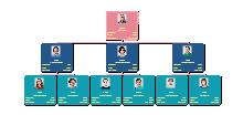 Vertriebsorganisationsstruktur